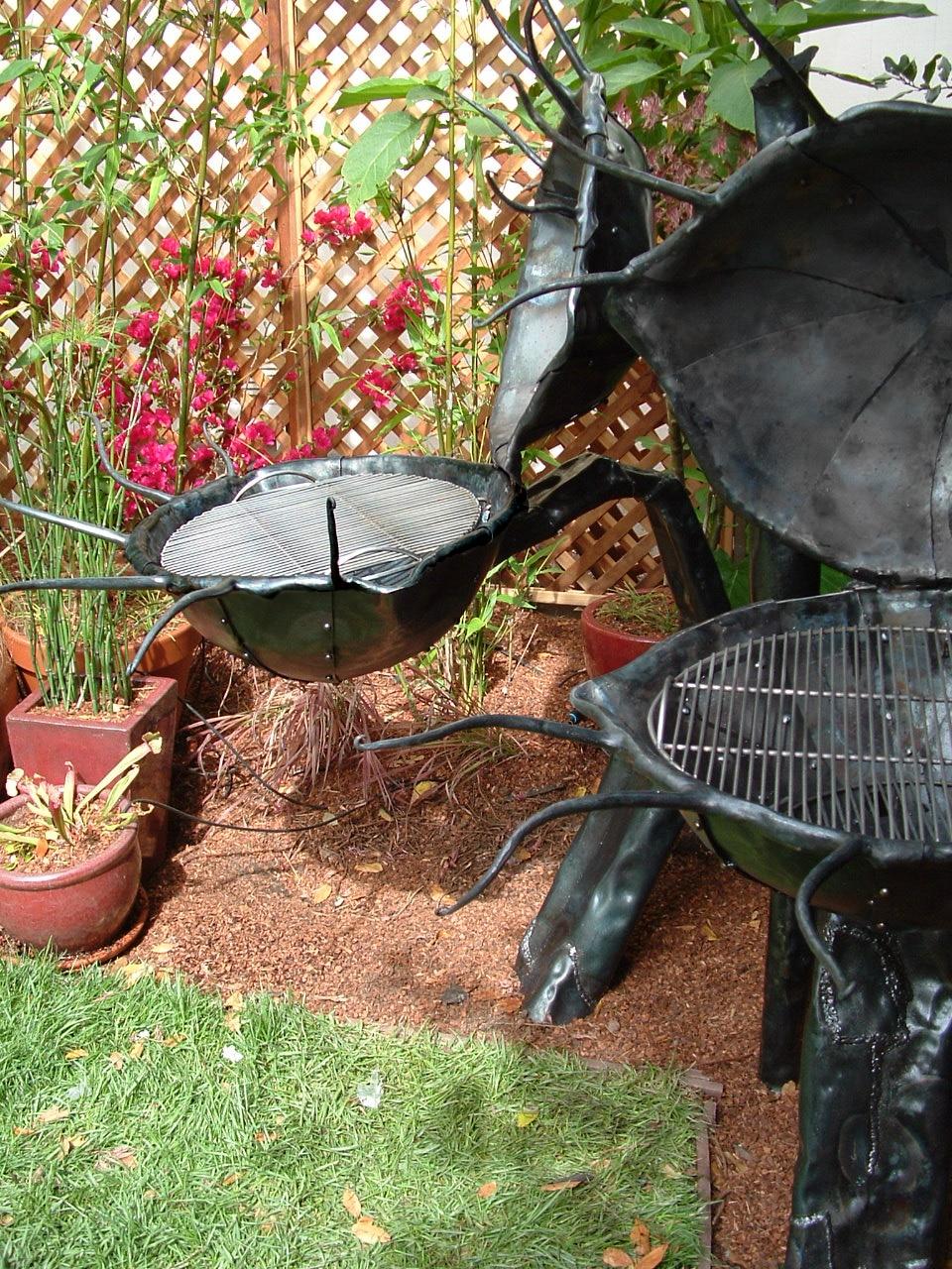 flytrap bbq daniel hopper design